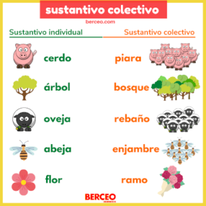español sustantivo colectivo